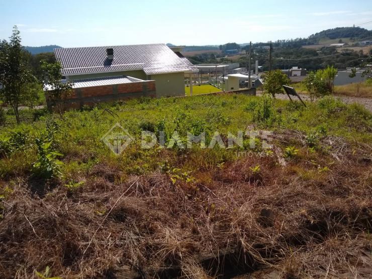 Terreno de Esquina, local Alto, uma ótima opção para construção