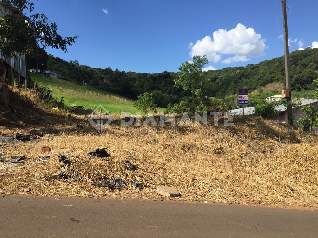 Terreno Pronto para Construir, Plano, com 336 M² de Área Total, Bem Localizado!