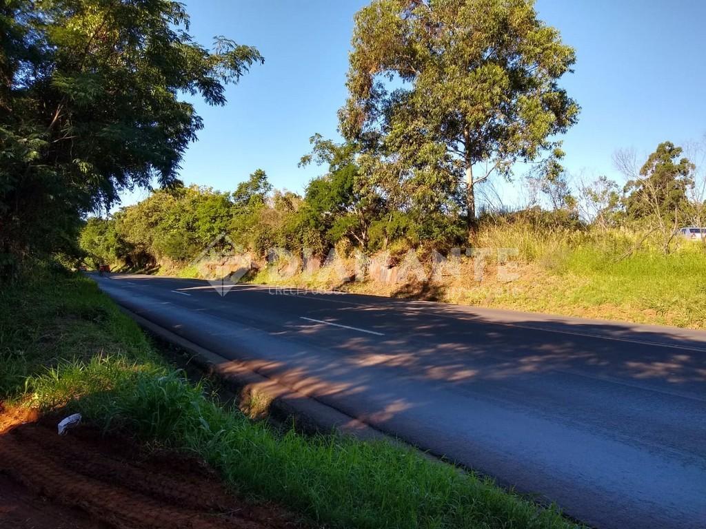 Lindo Sitio na Linha Freire com Frente para a Rodovia PR-483,32 KM de F. Beltrão