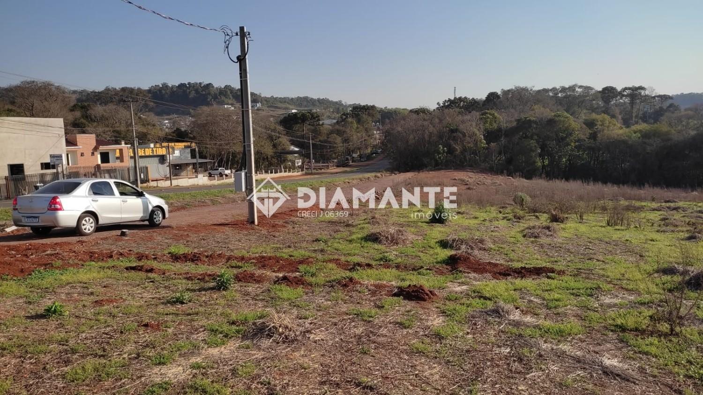 Investimento de Primeira! Área Plana ao lado da BR, Saída para Itapejara!!!