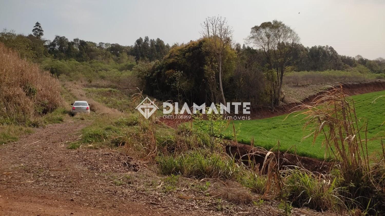 Sítio Localizado entre Flor da Serra do Sul e Marmeleiro, com 01 Alqueire e Meio