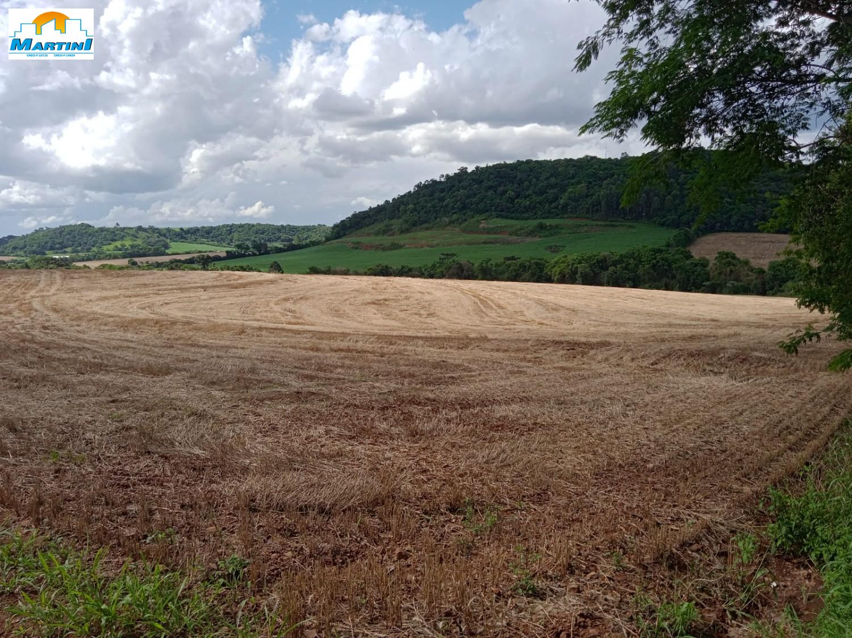 Fazenda/Chácara/Área Rural para Venda